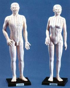 Meridiane des Köpers und deren Akupunkturpunkte